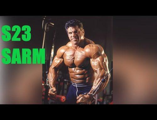 S23 SARM review